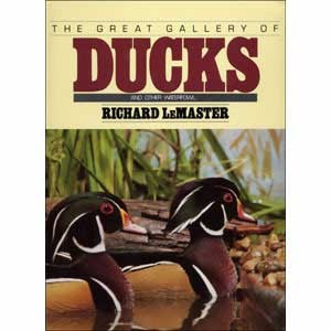 DISCONTINUED GREAT GALLERY OF DUCKS L