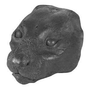 LG MT LION FACE CAST