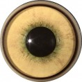 EXPANDED PUPIL COUGAR 22MM IRIS
