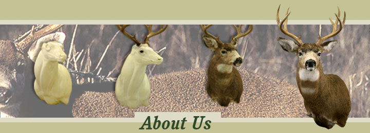 Research Mannikins Taxidermy Supplies: About Us