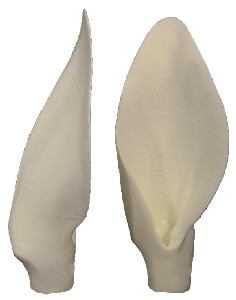 """3D COMPETITION EARS CARIBOU 5 1/4"""" x 2 1/2"""""""