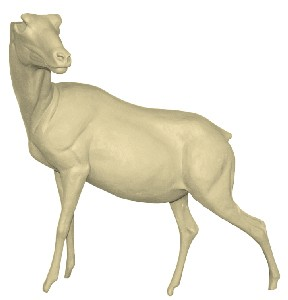 SPANISH IBEX LIFESIZE STANDING FRONT HIGH LT