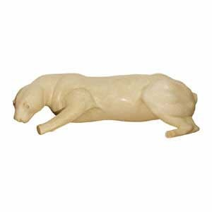 COUGAR LIFESIZE LT CROUCHED ON SHELF