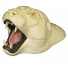COUGAR RUGSHELL DETAIL JAW CUP