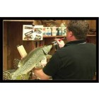 PAINTING A NORTHERN PIKE W/ BILL LEACH