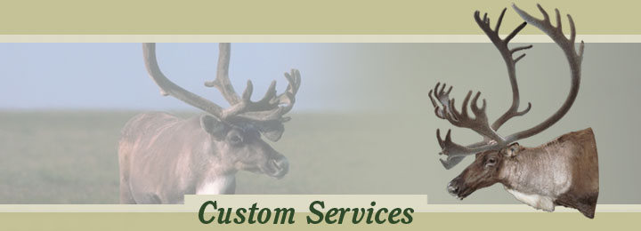 Research Mannikins Taxidermy Supplies: Shipping Information
