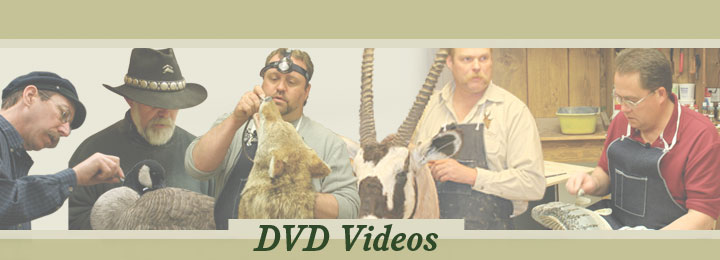 Research Mannikins Taxidermy Supplies: Videos