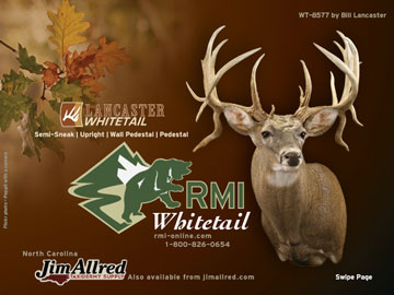 Whitetail E-cat